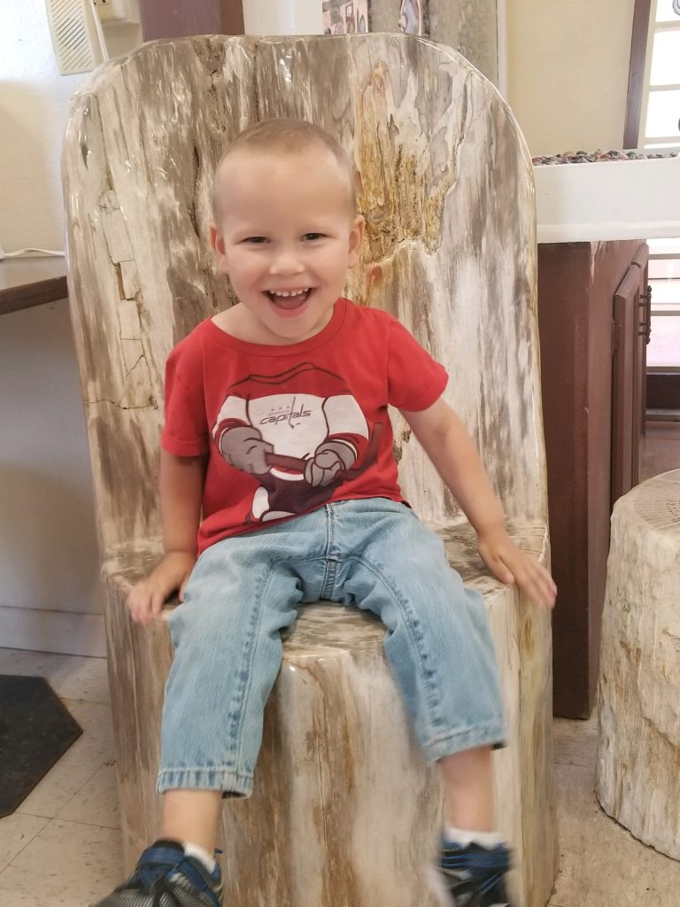 My son sitting in petrified wood chair